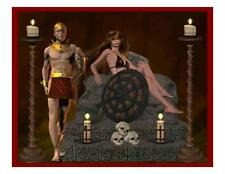 Custom Made T Shirt Warrior Man Woman Sexy Midevil Skulls Candles Armor Awesome