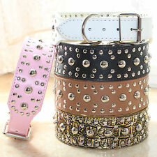 Brand New Leather Spiked Studded Dog Collar Big Dog Collar Pitbull Terrier M L
