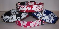 Wet Nose Designs Hawaiian Print Dog Collar Tropical Hibiscus Blue Red Pink Black
