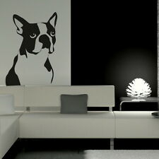 Boston TERRIER DOG Wall Art Trasferimento Decalcomania Adesivo cancellatura sul trasferimento di vinile NUOVO DO4
