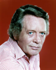 PATRICK MCGOOHAN COLOR RAFFERTY RARE TV PHOTO OR POSTER
