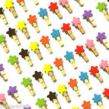 Mini Pegs Wooden Coloured Star Pegs  3cm Clothes Peg Wooden Clamp clip