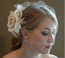 New Champagne Flower Fascinator Wedding Bridal Bride Birdcage Face Veil