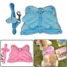 Mesh Leash Wings Harness Adjustable New 2 Safety & Colors Dog Pet