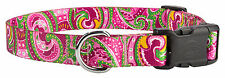 10 - Country Brook Design® Deluxe Dog Collars - Paisley Collection