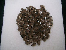 3x4mm -15x20mm Natural Smoky Quartz Oval Cut Brown Color Top Quality Gemstone
