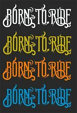 BORN TO RIDE CAR WINDOW DECAL...2 FOR 1 PRICE...PICK YOUR SIZE AND COLOR