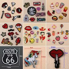 Cute Embroidered Iron Sew On Patches Badge Bag Clothes Fabric Craft DIY Applique