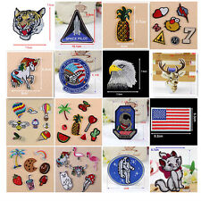 Embroidered Eagle Cat Sew Iron On Patches Badge Bag Fabric Craft DIY Appliques