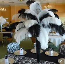 Wholesale-10-50-100-500pcs-natural-ostrich-feathers-6-26inches-15-65cm-Wedding