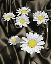 Daisy Aglow - Yellow Floral Home Decor Picture Wall Art Living room