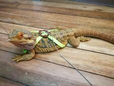 Bearded Dragon Reptile Lizard Gecko Critters Adjustable Harness and Leash Set