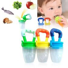 Baby Dummy Pacifier Safe Fresh Fruit Food Feeder Feeding Nibble Weaning Teething