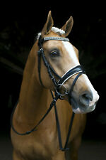 NEW Black/White Snaffle HORSE BRIDLE Bling Browband With Reins Cob or Full Size