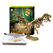 Dinosaur Excavation Kits Dig up Dinosaurs Geology Earth Science Toy for Kids