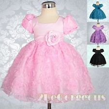 Baby Embossed Flower Girl Dress Up Wedding Party Infant Age 3M-24M FG159