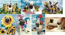 Pug Dog 5x7 Photo Quality Note Cards Your Choice