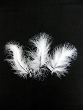 50 Marabou Feathers - Weddings Many Colours Assorted Shades