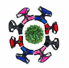 Any Size & Colors New Arrival Fashion Color Dog Harness Pet Puppy Harness