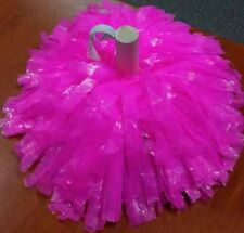 Cheer Pom Poms (24 individual poms), Pick Your Color: Solid Or Two Color Options