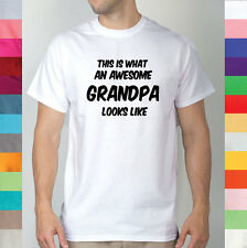 This Is What An Awesome Grandpa Looks Like Fathers Day Dad Papa Aunt T Shirt R2