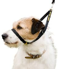 CANNY COLLAR (BLACK) THE BEST TRAINING COLLAR ON THE MARKET AUTHORISED SELLER
