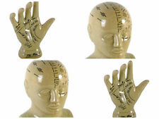 New Ceramic L.N Fowler Phrenology Head Palmistry Hand Boxed Fortune Teller