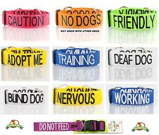 Heavy Duty Strong Clip Buckle & Semi-Choke Pet Dog Collars + 2+4+6 Foot Leads