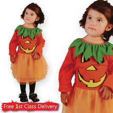 Girls Halloween Costume Pumpkin Fancy Dress Toddler Age 2-3 Years New