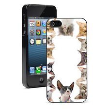 For iPhone 4 4S 5 5S 5c 6 6s Plus Hard Case Cover 1106 Purebred Cats Kitten