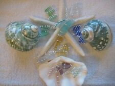 DESIGNER SEA BEACH GLASS ~ LOT OF 12 DANGLES/CHARMS ~  SEA BEACH GLASS