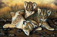 Tigers by Jackie Vaux Art Paper, Canvas or Stretched Canvas Print