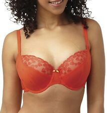 Panache 7561 Cleo Kali Balcony / Balconette Bra Burnt Orange
