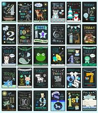 Baby Milestone Cards - Chalk Style - Boys Girls or Unisex - Photo Prop Signs