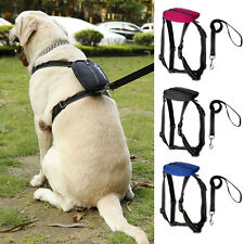 Collapsible Reflective Nylon Dog Strap Harness Leash Set with Bag for Large Dogs