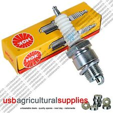 CHAMPION RJ19LM SPARK PLUG - NEXT DAY DELIVERY