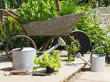 Traditional Galvanised Metal Watering Cans / Watering Can