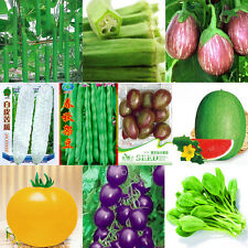 Garden Vegetable Seed Organic Plant Non-GMO Seeds Fruit Food New Bank Survival t