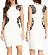 Maggy London Ivory Crepe & Black Lace Detail Stretch Sheath Dress, 10R - $138