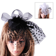 Lady Top Net Mesh Hat Fascinator Hair Clip Wedding Church Party Veil Feather