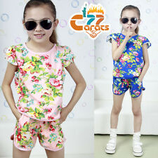 2PCS Toddler Kids Baby Girls Outfits T-shirt Tops+Shorts Pants Clothes Set 2-7Y
