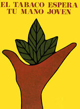 CUBAN PROPAGANDA POSTER - TOBACCO HARVESt poster print  Paper or Canvas Giclee