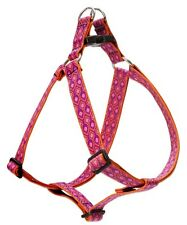 Lupine Alpen Glow Step-In Large Dog Harness (1 Inch)