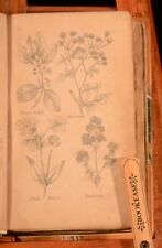 1848 Nicholas Culpeper Complete Herbal Illustrated Plates Medicine Recipes