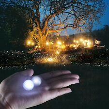 30pcs LED Fairy Berry Glowing Light Ball Floating Party Wedding Floral Decor