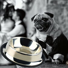 Stainless Steel No tip Non SLIP Dog Puppy Pet Food Water Bowl Dish Lot KG