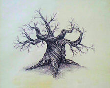 Gnarled Tree, Anonymous, 1970 (Original American Pen and Ink Art Print)