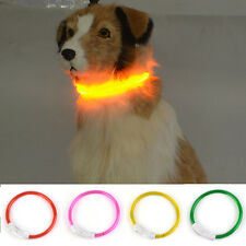Rechargeable USB New Waterproof LED Flashing Light Band Safety Pet Dog Collar