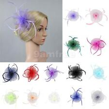 Flower Net Feather Fascinator Hair Clip Wedding Lady Races Tea Party Church Hat