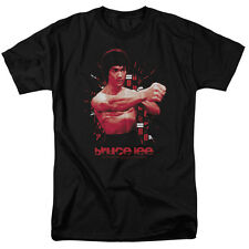 Bruce Lee THE SHATTERING FIST Licensed Adult T-Shirt All Sizes
